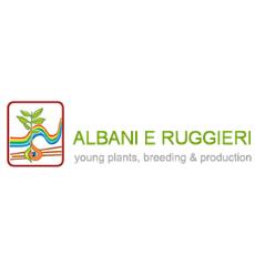 Albani Vincenzo e Ruggieri Italina s.s.a