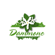 dammone_vivai