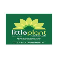 little_plant