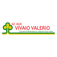 VALERIO VIVAIO
