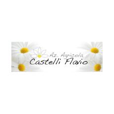 CASTELLI FLAVIO